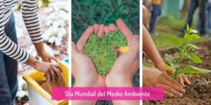 Imagen en la que aparecen diferentes actos en comunión con el Medio Ambiente